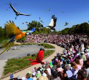 parc oiseaux